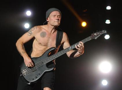 Professional Bass Guitarist Flea