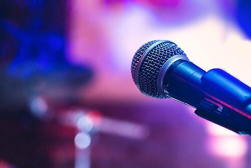 Best Dynamic Microphone Brands | Shure and Sennheiser
