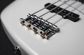 Fretted vs. Fretless Bass Guitar - What Are The Pros And Cons